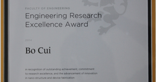 Engineering Research Excellence Award